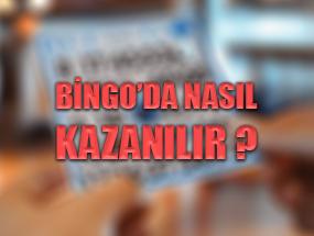 Bingo'da Nasıl Kazanılır : En iyi 3 Strateji